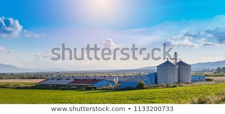 Ferme bâtiments deux faible organique île Photo stock © searagen