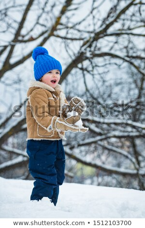 Children in Winter Park playing snowballs Stock photo © adam121