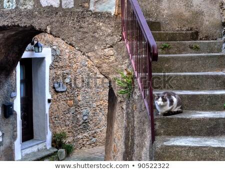 Castelvecchio di Rocca Barbena  Stock photo © LianeM