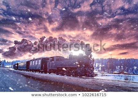 Landscape with a steam train Stock photo © remik44992