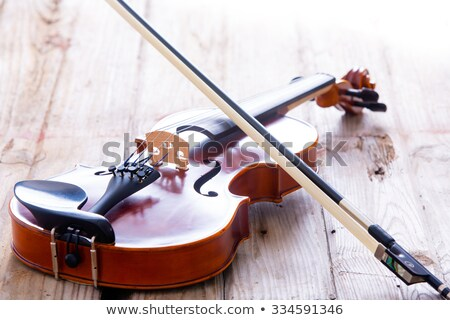 Close up Small Violin for Kids on the Floor Stock photo © ozgur