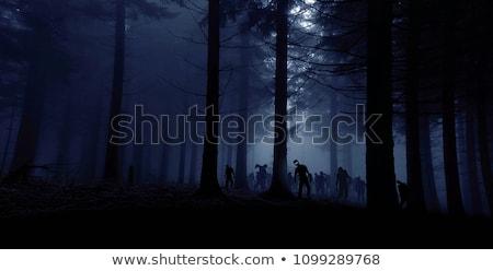 Floresta zumbi ilustração madeira árvores caminhada Foto stock © bluering
