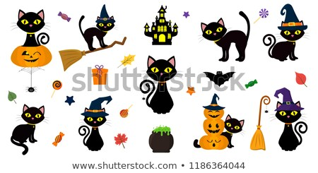 Black Witches Cat Cartoon Character in Hat Stock photo © Krisdog