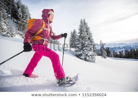 Kış trekking kar İtalyan alpler Stok fotoğraf © aletermi