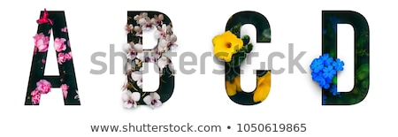 Grünen Alphabet Blumen groß Briefe dekoriert Stock foto © Oksvik