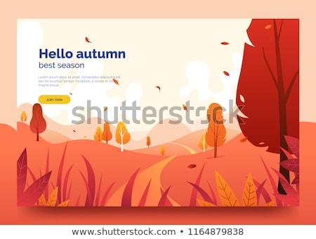 Outono paisagem caminho montanhas montanha panorama Foto stock © Kotenko