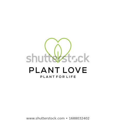 Soyut doğa kalp bitki ikon logo Stok fotoğraf © blaskorizov