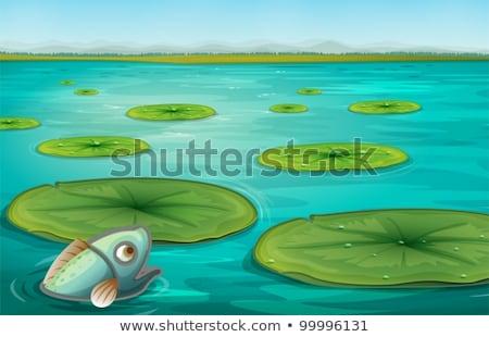 Stagno scena pesce sfondo arte piscina Foto d'archivio © colematt