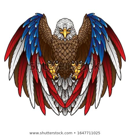 aterrizaje · águila · silueta · ilustración · naranja - foto stock © jeff_hobrath