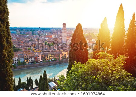 Idyllic Verona skyline at red sundown view Stock photo © xbrchx
