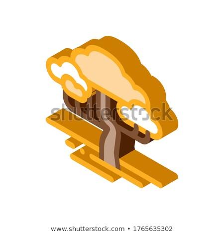 Szavanna fa izometrikus ikon vektor felirat Stock fotó © pikepicture