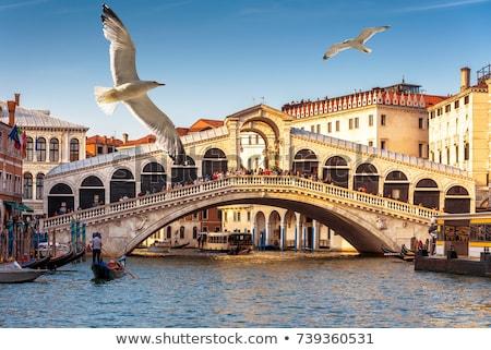 ponte · Veneza · Itália · noite · tempo · céu - foto stock © andreykr
