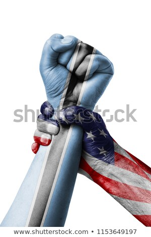 Pięść malowany kolory Botswana banderą niski Zdjęcia stock © vepar5