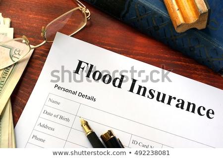 Inundação seguro água dano residencial casa Foto stock © Lightsource