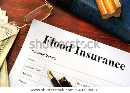 Flood Insurance Stock photo © Lightsource