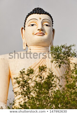 Large statue of Buddha in Bentota, Sri Lanka Stock photo © pzaxe