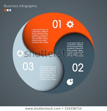 Infografica design opzioni grigio Foto d'archivio © limbi007