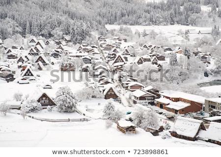 Köy kulübe kulübe su doğa kar Stok fotoğraf © rufous
