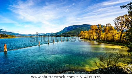 Coastal Mountains in the Fraser Valley Stock photo © hpbfotos