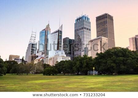 Sydney cityscape bâtiments coucher du soleil port gratte-ciel Photo stock © lovleah