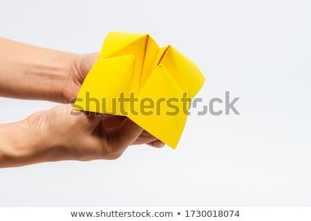 Kâğıt falcı iş karar gelecek seçim Stok fotoğraf © devon