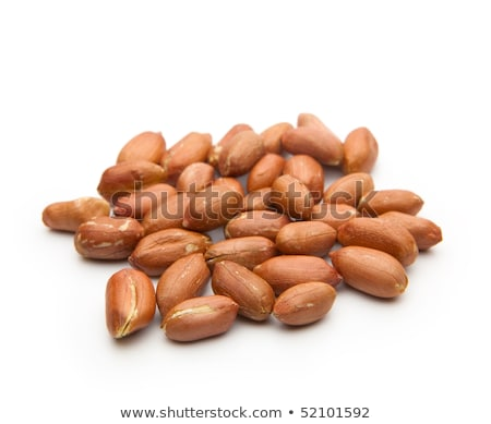 groundnut in the skin close-up  Stock photo © OleksandrO