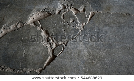 Crack in the concrete pavement as abstract background Stock photo © stevanovicigor