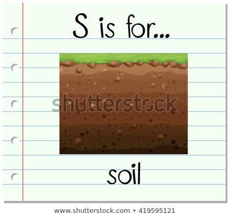 Flashcard letter S is for soil Stock photo © bluering