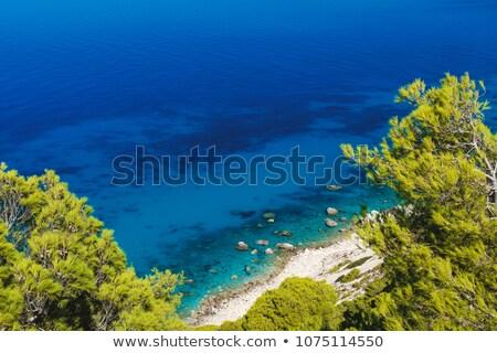 egzotikus · tengerpart · öböl · kék · ég · csodálatos · nap - stock fotó © ankarb