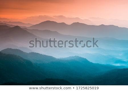 természet · tájkép · sziluettek · hegyek · fák · tél - stock fotó © Leo_Edition