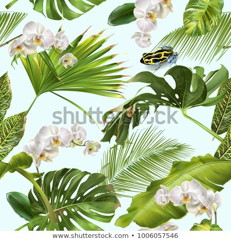 Stock photo: Tropical Orchid Frog Pattern