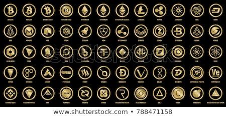 valuta · munt · vector · element · pictogram · mijnbouw - stockfoto © tashatuvango