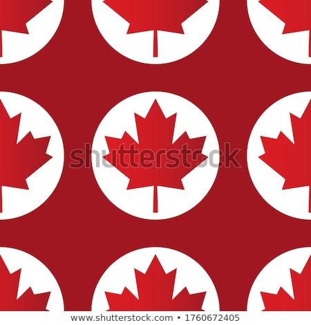 Canadian seamless background, vector illustration. stock photo © kup1984