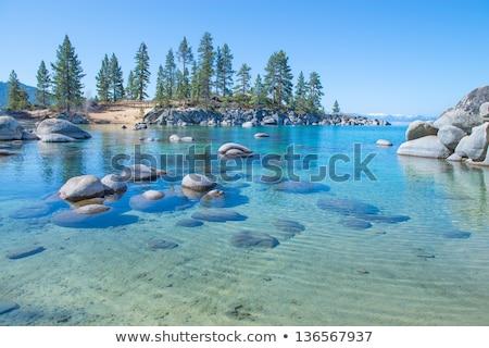 Su göl kıyı yaz yeşil Stok fotoğraf © boggy