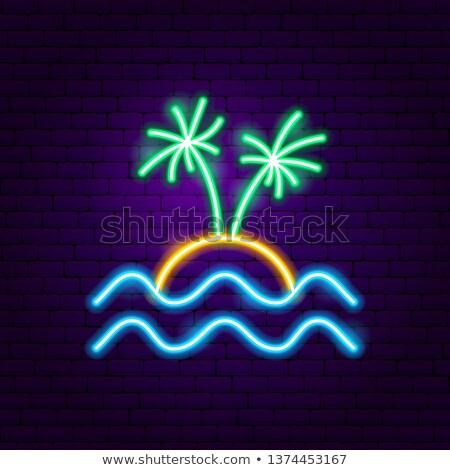 Desfrutar férias néon etiqueta verão promoção Foto stock © Anna_leni