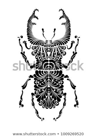 жук оленей декоративный иллюстрация черно белые графика Сток-фото © ayaxmr