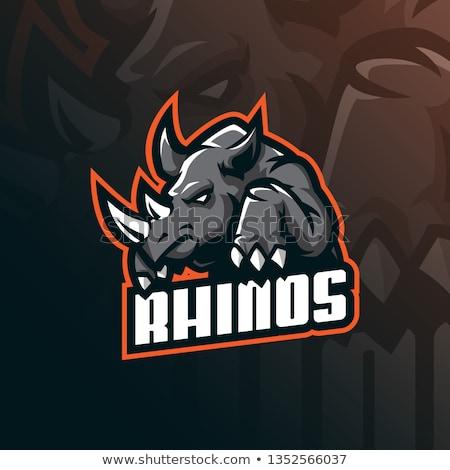 Fotbal rinocer desen animat ilustrare joc sport Imagine de stoc © bennerdesign