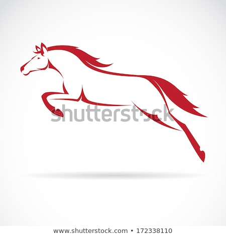 Horse vector icon with reflection Stock photo © RedKoala