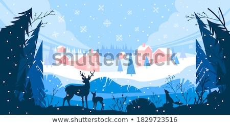 Téli tájkép fény háttér jég tél gyönyörű Stock fotó © bigjohn36