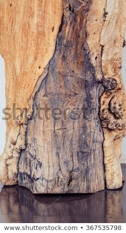 Old wooden Railway color processed Stock photo © pxhidalgo