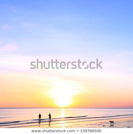 幸せ 若い女性 徒歩 ビーチ 遊歩道 美しい ストックフォト © cwzahner
