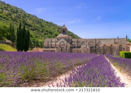 abdij · lavendel · veld · Frankrijk · gebouw · veld · architectuur - stockfoto © vwalakte