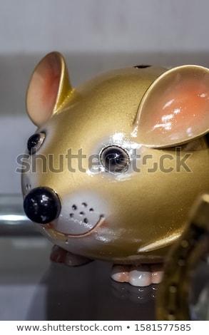 casa · ratón · imagen · pequeño · mascota · tocar - foto stock © michaklootwijk