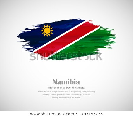 Flag of Namibia painted with brush Stock photo © tang90246