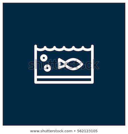 Tartaruga natação peixe tanque aquário Foto stock © wavebreak_media