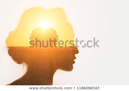 life and creation stock photo © lightsource