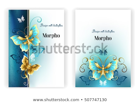 Design for brochure with luxury butterflies Stock photo © blackmoon979