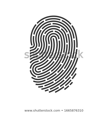 Ujjlenyomat ikon app személyi igazolvány vektor felirat Stock fotó © fresh_5265954