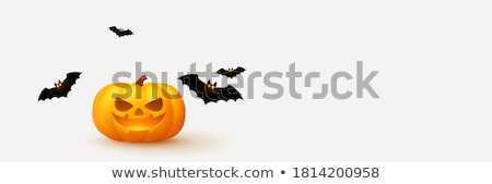 Vector realistic pumpkin Stock photo © frescomovie