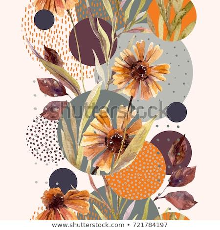幾何学的な 秋 デザイン 抽象的な 文字 ハロー ストックフォト © ivaleksa